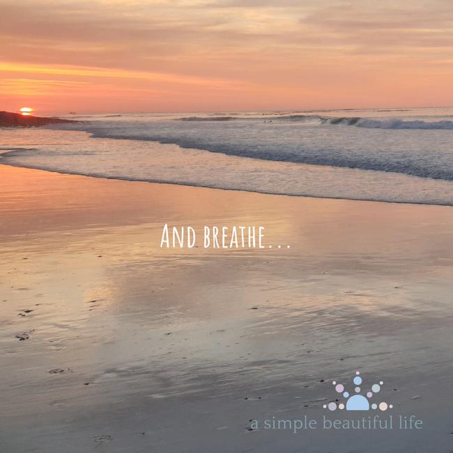 breathe pause meditate calm serenity